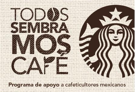 Starbucks promueve los cafetales mexicanos