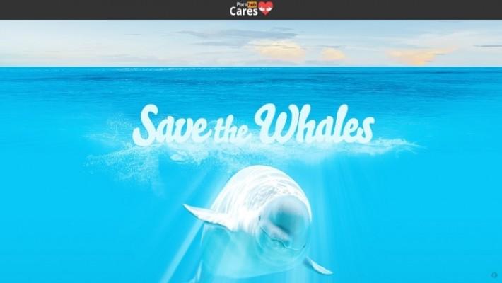 Ver pornografía ayuda a salvar a las ballenas
