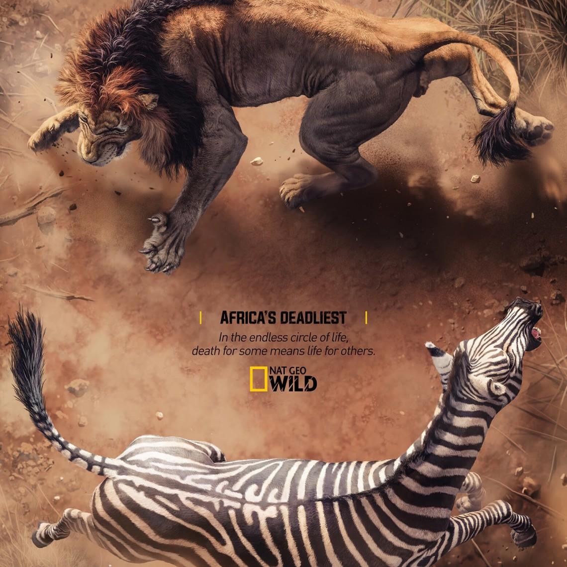 Africa´s Deadliest, pone cara a cara a los animales de África con su presa